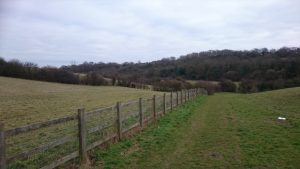 Horsted Valley from Davis Estate